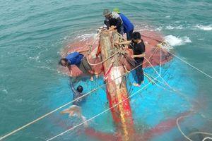 Va vào đá ngầm, tàu cá chở 12 ngư dân chìm trên biển