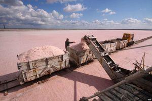 Hàng nghìn tấn muối hồng siêu giá trị Crimea xuất sang Nga