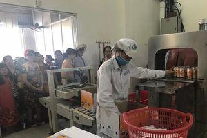 Chuỗi sản xuất và cung cấp sữa Ba Vì: Nông dân, doanh nghiệp cùng hưởng lợi