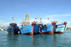 Việt Nam chuẩn bị đón đoàn thanh tra EU về vấn đề 'thẻ vàng'