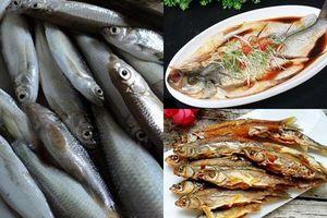 5 cách chế biến cá thơm ngon, chẳng bao giờ bị tanh ai cũng nên biết