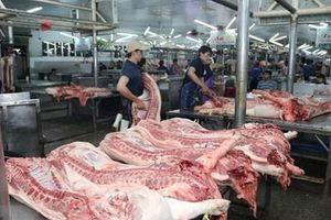 Số lợn buộc phải tiêu hủy do bệnh dịch tả lợn châu Phi đã giảm mạnh