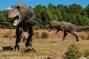 Khám phá cực khó tin nhưng có thật về khủng long (phần 1)