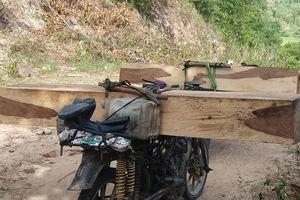 Khởi tố vụ gỗ lậu vô tư qua trạm quản lý bảo vệ rừng