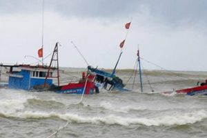 Kịp thời ứng cứu 12 ngư dân trên tàu cá bị chìm