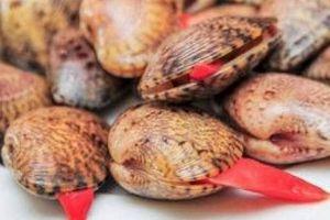 Người tung tin 'ăn sò lụa đỏ tử vong' bị phạt 10 triệu đồng