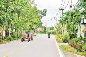 Tp.HCM: Nông nghiệp hàng hóa thúc đẩy nông thôn mới ở Củ Chi