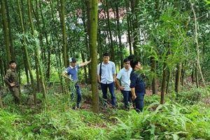 Phó chủ tịch xã chết trong rừng ở Bắc Giang: Vì mắc nhiều sai phạm?