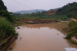 Trâu, bò, dê... vô tư đằm suối nước kênh vào nhà máy nước sạch sông Đà