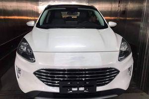 Ford Escape 2020 đã về Việt Nam, giá bán tạm tính 1 tỷ đồng