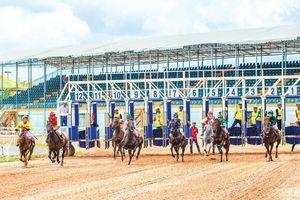 Đặt cược với kinh doanh trường đua ngựa