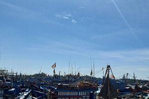 Quảng Ngãi: Khu neo đậu tàu thuyền vừa thiếu lại vừa yếu