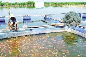 Bắc Ninh: Tìm hướng tháo gỡ khó khăn cho HTX nông nghiệp
