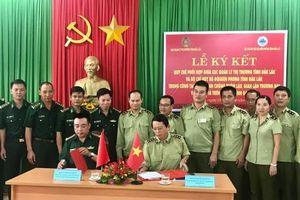 Quản lý thị trường và Bộ đội biên phòng phối hợp chống buôn lậu vùng biên