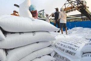 Nâng cao giá trị cho hạt gạo Việt Nam