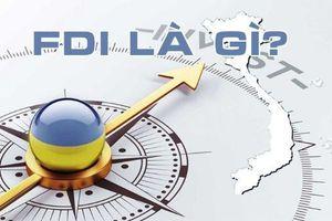 Tổng quan về FDI