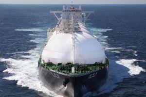EVN và JERA Nhật Bản hợp tác phát triển kinh doanh chuỗi giá trị LNG