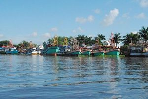 Hàng loạt tàu cá Kiên Giang nằm bờ