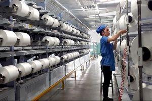 Tiêu thụ sợi tái chế tăng mạnh