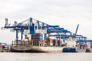 TPHCM tìm giải pháp đẩy mạnh xuất khẩu