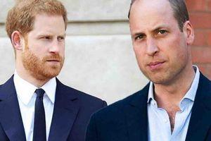 Hoàng tử Harry thừa nhận rạn nứt trong mối quan hệ với anh trai