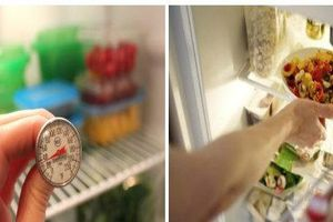 Cách để thức ăn trong tủ lạnh không biến thành 'thủ phạm' gây ung thư