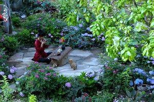 Ngắm ngôi nhà mộc mạc đầy hoa trái của 'đệ nhất Vlogger' Lý Tử Thất