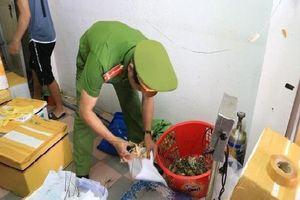 Đà Nẵng: Phát hiện tôm hùm bơm tạp chất để tăng trọng, giữ tươi
