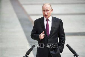 'Gấu Nga' trở lại châu Phi