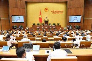 Dự thảo Bộ luật Lao động (sửa đổi): Nhiều Đại biểu đồng tình giữ giờ làm việc 48 giờ/tuần