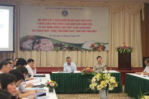 Chuyên gia hiến kế phát triển chăn nuôi giai đoạn 2020 - 2030