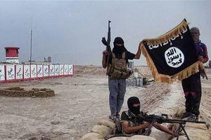 Quốc hội Đan Mạch thông qua luật tước quốc tịch của các thành viên IS