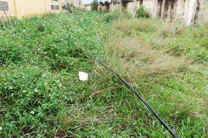 Học sinh lớp 2 bị điện giật tử vong: Sợi dây điện đã rơi xuống từ nhiều ngày trước?