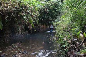 17 ngày sau sự cố ô nhiễm nước sông Đà, Viwasupco chính thức xin lỗi người dân