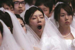 'Tôi đi ăn cưới nào biết mặt cô dâu chú rể, chỉ tới trả nợ'