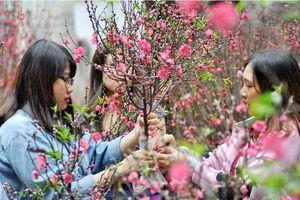 Bộ Lao động - Thương binh và Xã hội thông báo lịch nghỉ Tết Âm lịch năm 2020