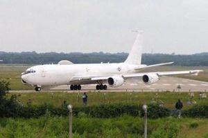 Máy bay 'Ngày tận thế' của Mỹ phải hạ cánh khẩn cấp vì…chim