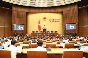 Bên lề Quốc hội: Quy định 2 Phó Chủ tịch HĐND chuyên trách không làm tăng biên chế