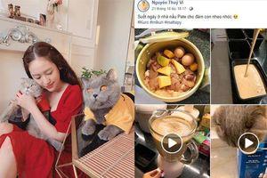Thúy Vi đáp trả 'cực gắt' khi bị cư dân mạng 'trù ẻo' vì cho mèo ăn quá sang