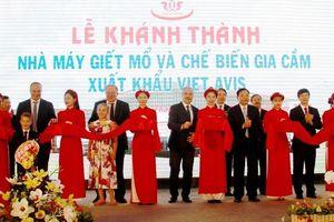 Thanh Hóa: Khánh thành nhà máy giết mổ, chế biến gia cầm xuất khẩu