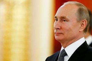 Thượng đỉnh Nga - châu Phi: 'Cú xoay trục' ngoạn mục của Tổng thống Putin?