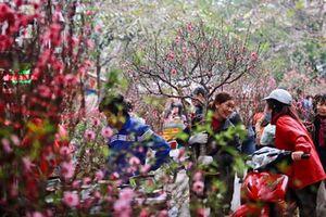 Thông báo chính thức về lịch nghỉ Tết Nguyên đán Canh Tý 2020