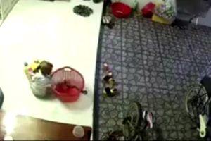 Rắn chui vào nhà, bé trai tưởng đồ chơi ở trong giỏ lôi ra nghịch