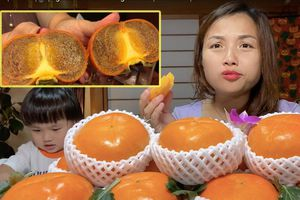 Ai ngờ trái hồng đen kỳ lạ trong vlog mới của Quỳnh Trần JP lại là loại quả dành cho giới thượng lưu Nhật Bản, giá cắt cổ mà vẫn hết hàng
