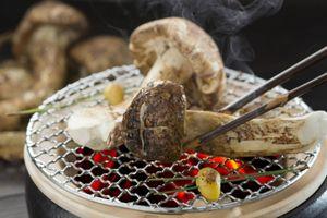 Mùa thu đến Nhật đừng quên ăn thử loại nấm giá 1.000 USD/kg