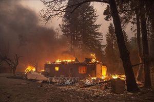 Khoảng 180.000 người phải sơ tán vì cháy rừng tại California
