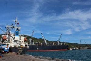 Tập đoàn Trung Quốc muốn đầu tư logistics, mở tuyến container tại cảng Vũng Áng