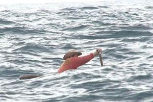 Dừng tìm kiếm 2 ngư dân mất tích trên biển
