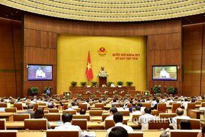 Nội dung kiến nghị và trả lời của Thanh tra Chính phủ, Tòa án nhân dân tối cao, Bộ Thông tin - Truyền thông và Bộ Văn hóa - Thể thao và Du lịch