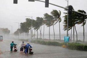 Phó Thủ tướng chỉ đạo triển khai ứng phó áp thấp nhiệt đới, bão và mưa lũ